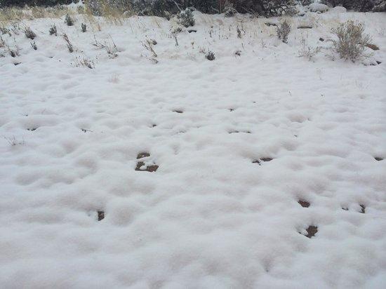 Comfort Inn & Suites Cedar City: Snow arrived in Cedar