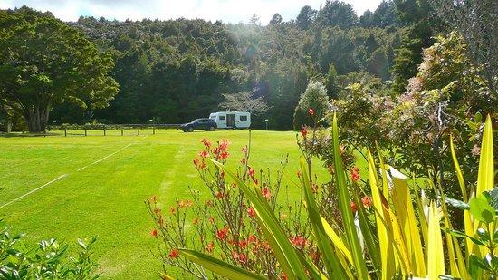 Kauri Coast Top 10 Holiday Park: The lovely gardens