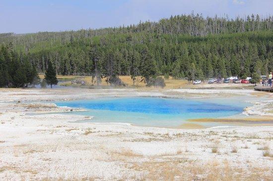 Colori a Biscuit Basin