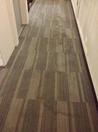 38 Bath Street Serviced Apartments: dirty carpets
