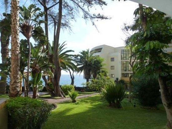 Pestana Palms Ocean Aparthotel: From the garden