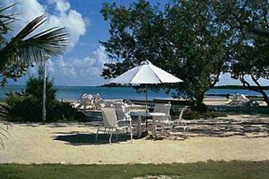 White Gate Court: Relax at the beach tables
