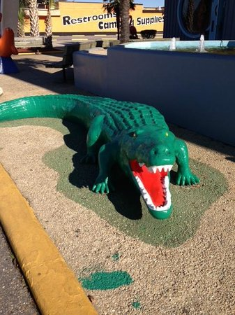 South of the Border: The Gator got a face lift, too.