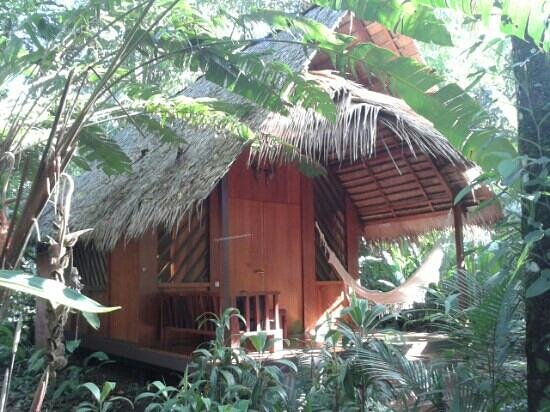Hotel Shawandha Lodge : the lodge