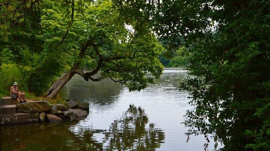 Bronx, NY: Van Cortlandt Lake
