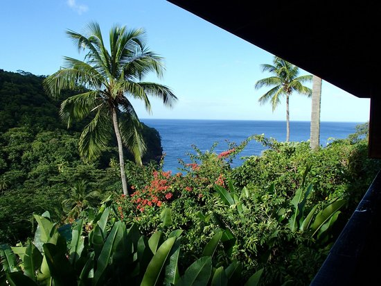 Anse Chastanet : View from room 7D