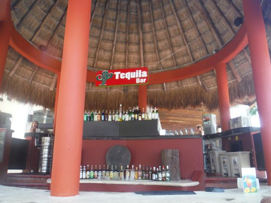 Catalonia Yucatan Beach: Tequila Bar! Best Bartenders in Mexico!