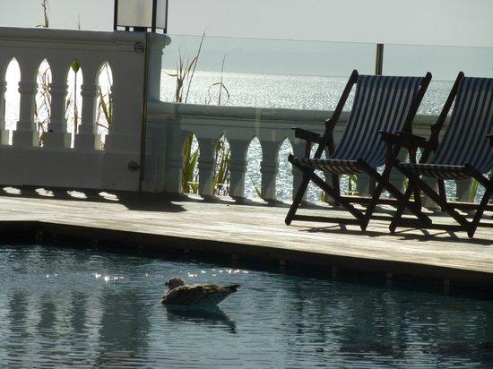 BELA VISTA Hotel & SPA: Almost like a private pool...