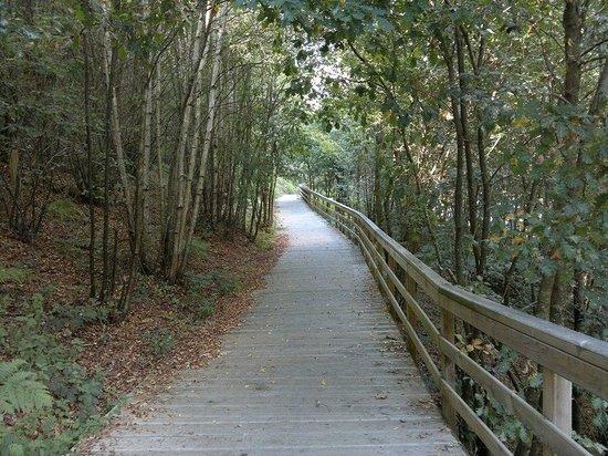 Parque del Miño: ....genial para pasear....