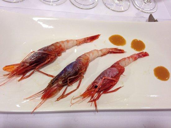 Marejol: Almost rare shrimps from Vilanova