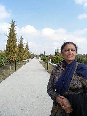 Bakhautdin Naqsband Mausoleum: Cool, Calm and Lush Green Avenue to the Mausoleum