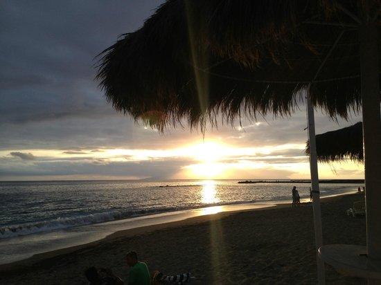 Hacienda Cristoforo : El Duque beach scene