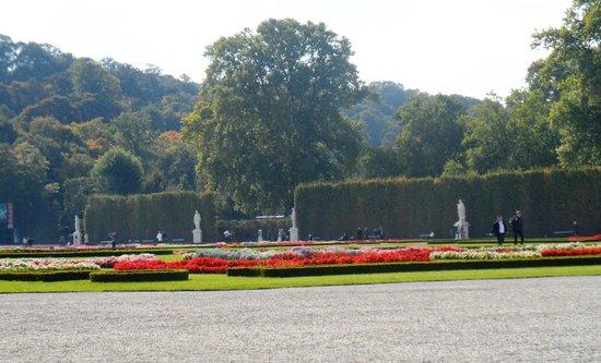 Schonbrunner Gardens : Schönbrun wood