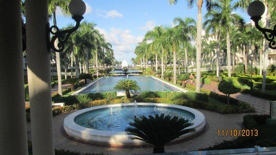 Hotel Riu Palace Punta Cana: vista de los jardines