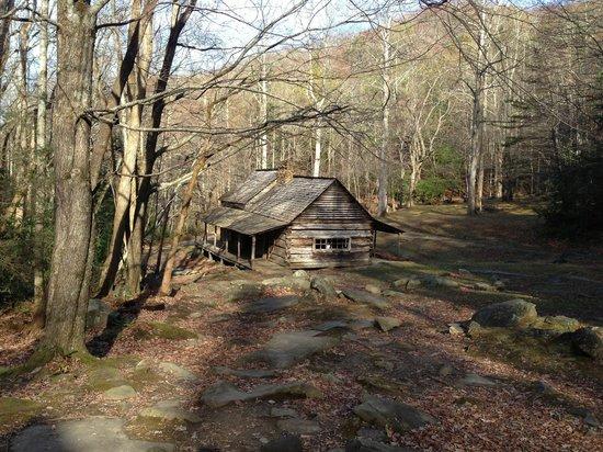 Noah Bud Ogle Cabin: Ogles place