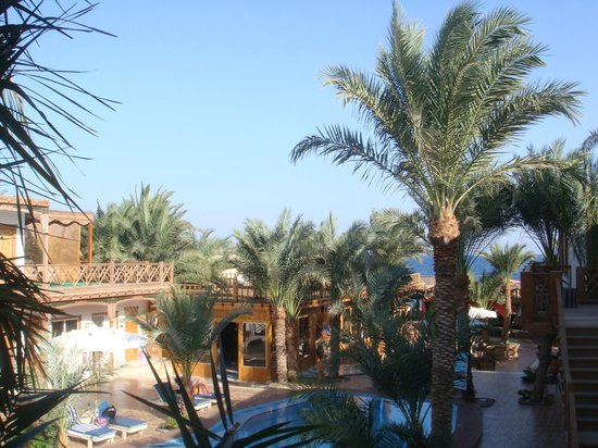 Acacia Dahab Hotel: View from our balcony