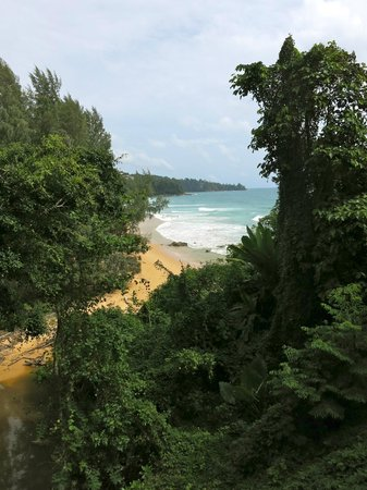 Pullman Phuket Arcadia Naithon Beach: View from our verandah