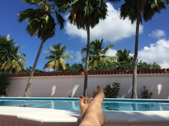 Bravo Beach Hotel: pool