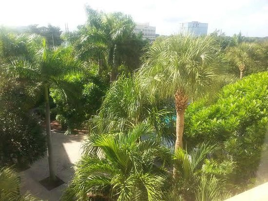 Renaissance Boca Raton Hotel: View from the 5th floor