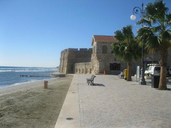 Cactus Hotel: Museo del Castillo de Larnaca Chipre