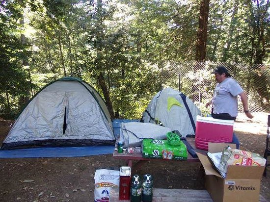 Redwoods River Resort & Campground: Awesome sites for tents and trailers