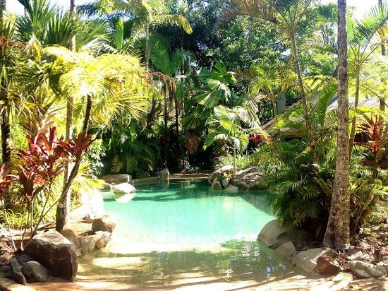 Ferntree Rainforest Lodge: One of two pools