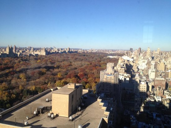 The Pierre, A Taj Hotel, New York: View from Room 3406