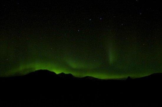 Reykjavik Excursions Northern Lights Tour: Northern Lights, Iceland