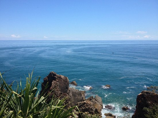 The Edge On Beaches: Looking out from Joseph Banks conservation reserve
