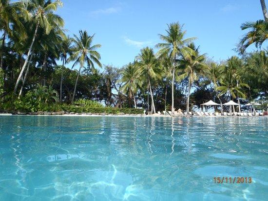 Sheraton Mirage Port Douglas Resort: beautiful gardens surrounding the lagoons..