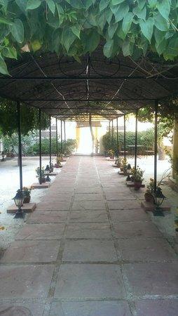 Royal Heritage Haveli: Hallway