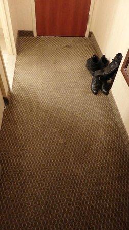 Hilton Garden Inn Saskatoon Downtown: stains on the carpet