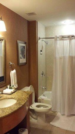 Hilton Boston Downtown / Faneuil Hall: Bathroom