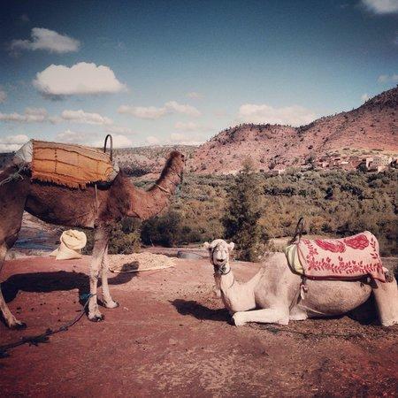 High Atlas Mountains: En route to the Atlas