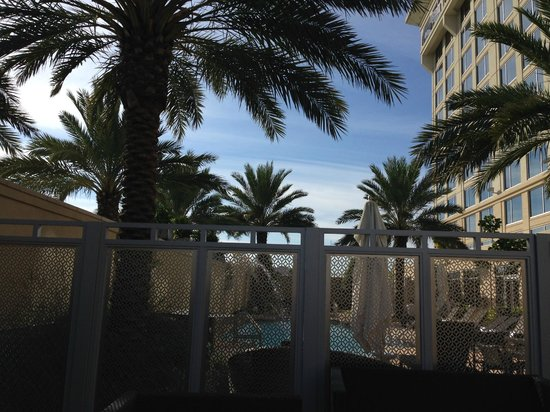 Renaissance Baton Rouge Hotel: Palm Trees On Patio
