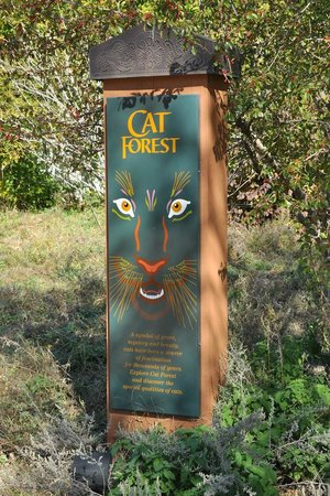 Oklahoma City Zoo: Cat Forest sign.