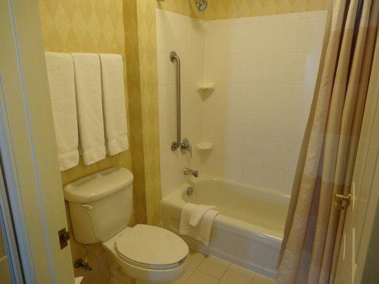 Residence Inn Detroit Novi: バスルーム