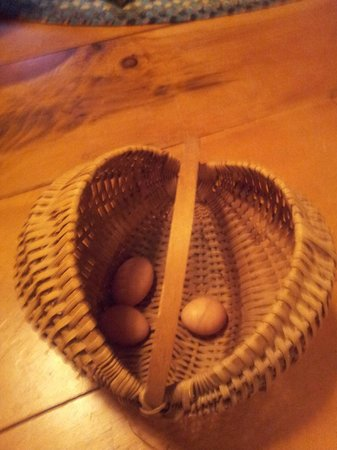 Vermont Grand View Farm and Bed & Breakfast : The eggs we collected