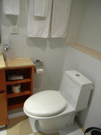 CHI Residences 314: Toilet