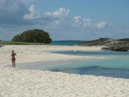 Melia Buenavista: Playa principal