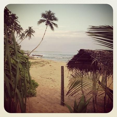 Cinnabar Resort: view from cinnabar