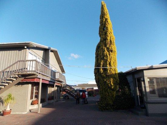 Sequoia - Acacia Lodge Motel: L'entrée du motel, notre chambre été à l'étage