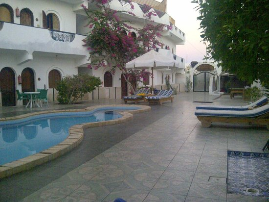 Dahab Plaza Hotel: My room was under this beautiful tree