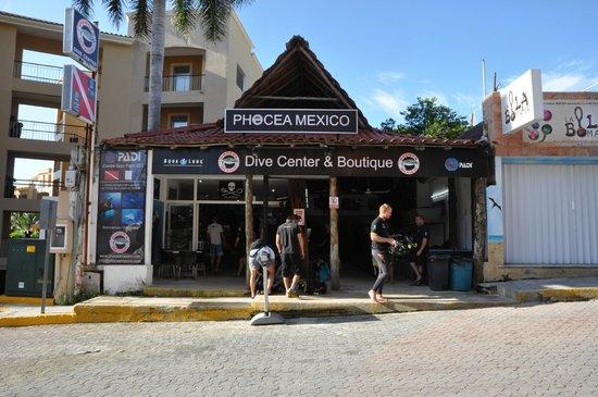 Phocea Mexico: le club
