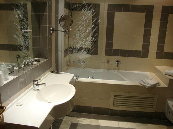 Hotel Torino : Baño muy grande pero con ninguna presión en los grifos y con la cisterna medio rota