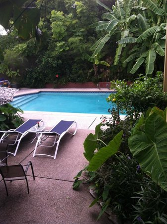 Maison de Macarty: A lovely and refreshing pool in a tropical garden