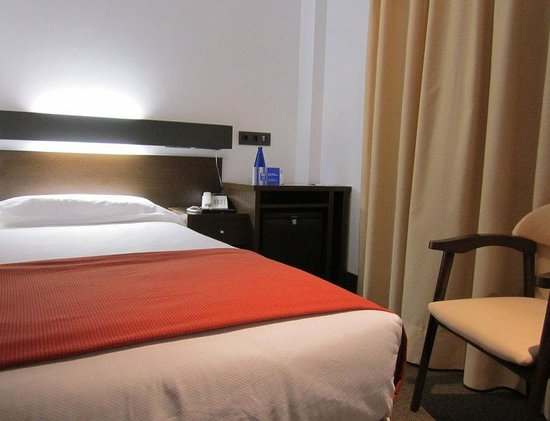 Hotel Domus Plaza Zocodover: Room
