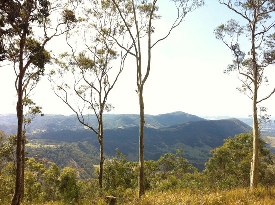 Eaglereach Wilderness Resort: Gorgeous view from Silkwood lodge