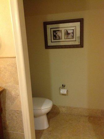 The Westin Sacramento: Toilet
