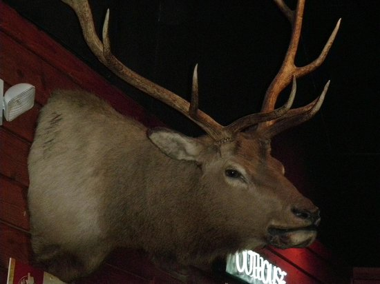 Texas Roadhouse : Deco Deer